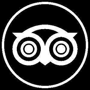 icono-tripadvisor